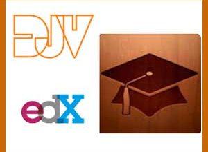 Bildungsanbieter im Netz